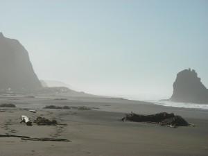 Looking south on Irish Beach