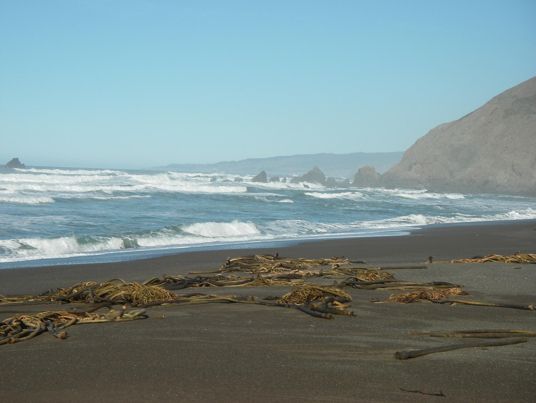 Vrbo Irish Beach California