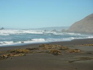 Irish Beach, looking north.